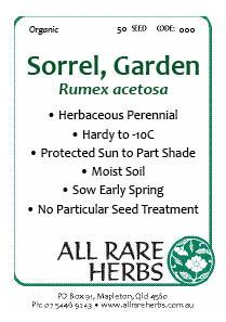 Sorrel, Garden  seed
