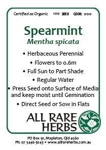Spearmint  seed