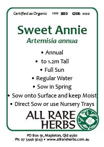 Sweet Annie, seed