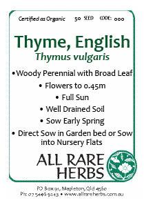 Thyme, English (Broadleaf)  seed