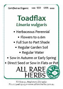 Toadflax, seed