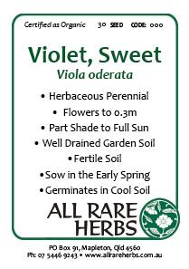 Violet, Sweet  seed