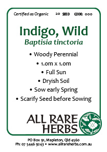 Indigo, Wild  seed