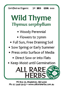Thyme, Wild  seed