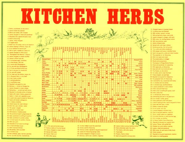 Kitchen Herbs; chart rolled in tube