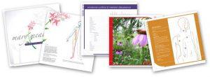Meridian Flower Essences, booklet