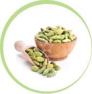 Herb Seed