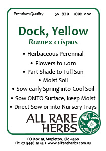 Dock Yellow
