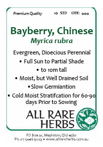 Bayberry Chinese